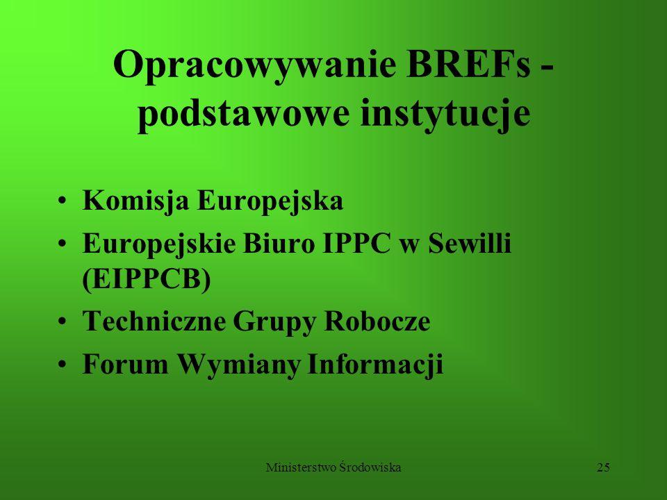 Opracowywanie BREFs - podstawowe instytucje