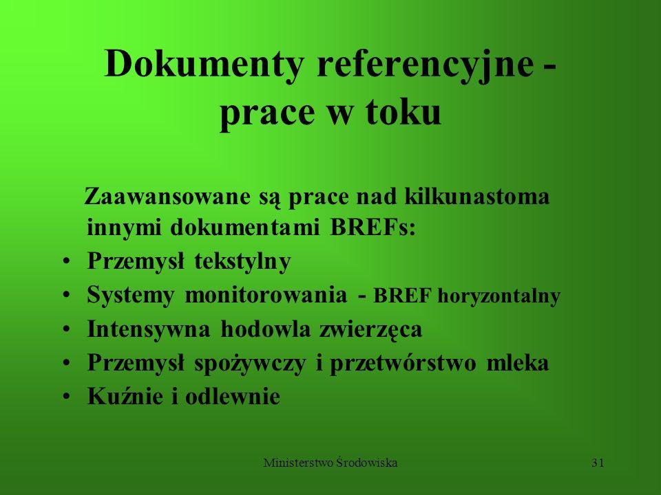 Dokumenty referencyjne - prace w toku