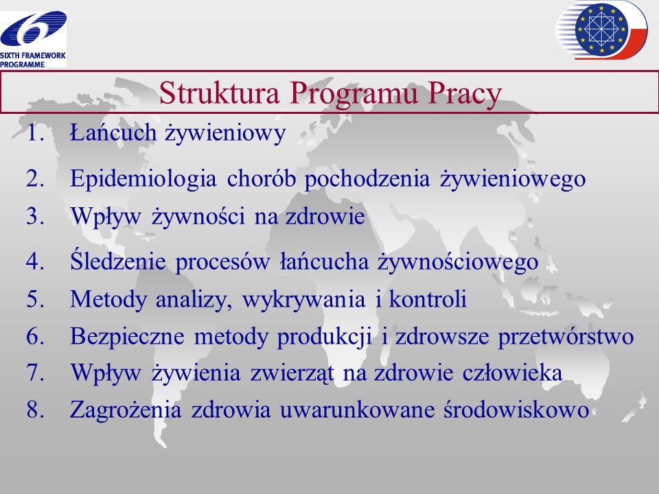 Struktura Programu Pracy