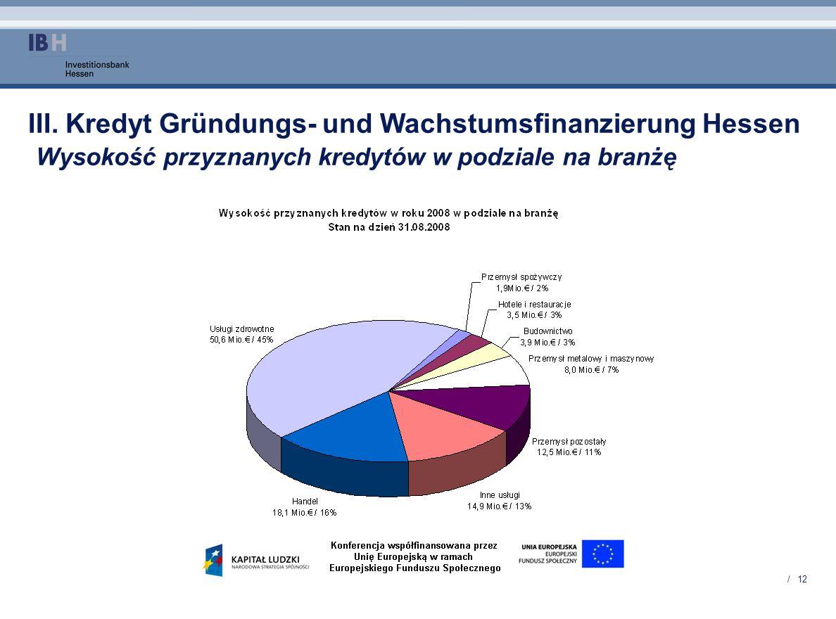 III. Kredyt Gründungs- und Wachstumsfinanzierung Hessen Wysokość przyznanych kredytów w podziale na branżę