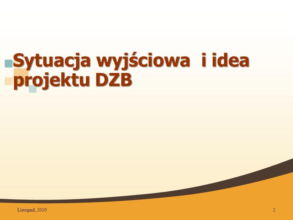 Sytuacja wyjściowa i idea projektu DZB