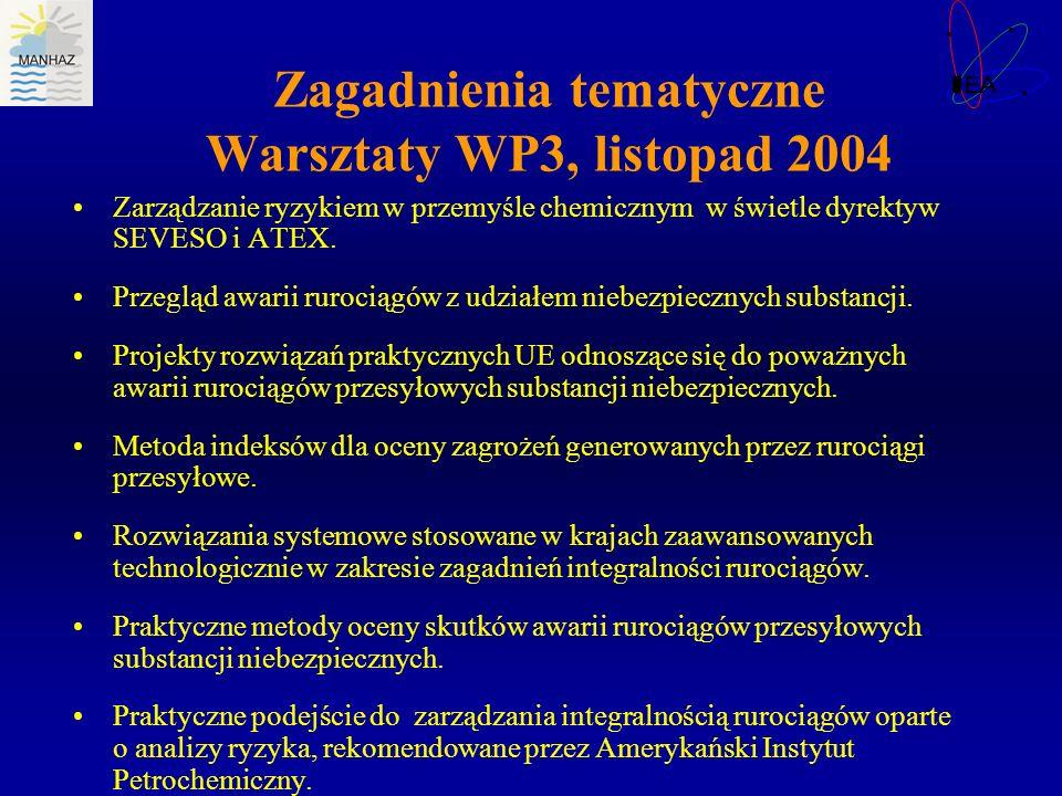 Zagadnienia tematyczne Warsztaty WP3, listopad 2004