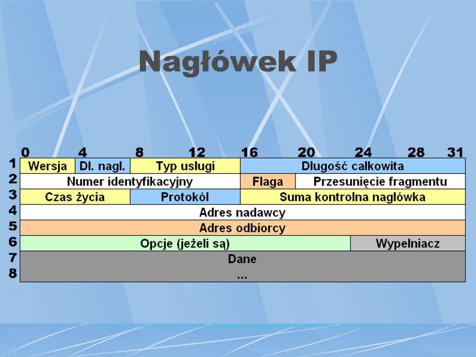 Nagłówek IP