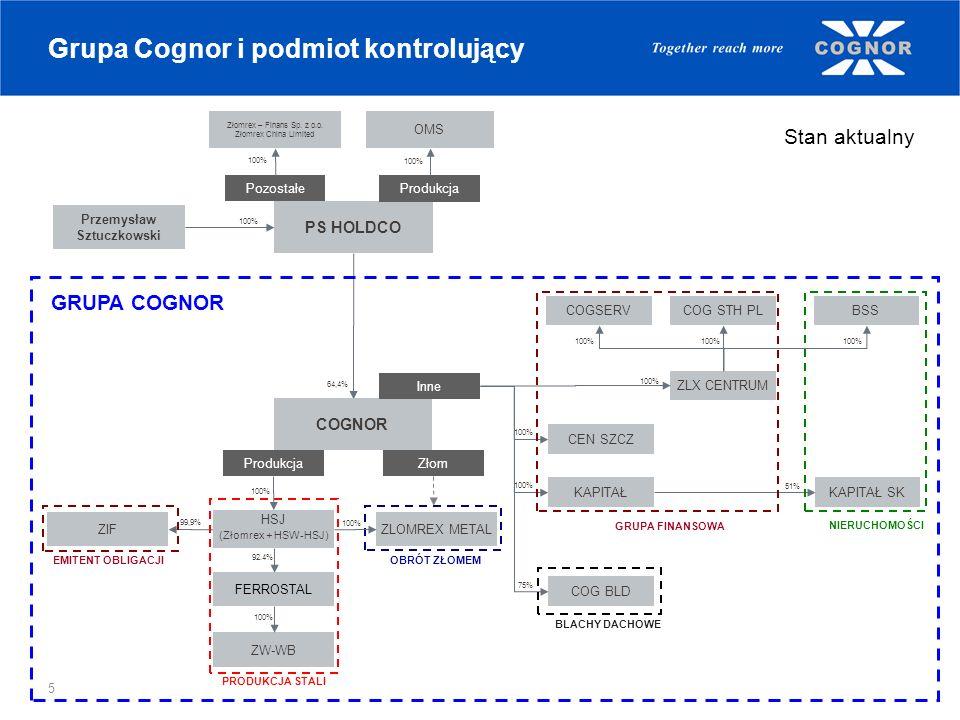 Grupa Cognor i podmiot kontrolujący