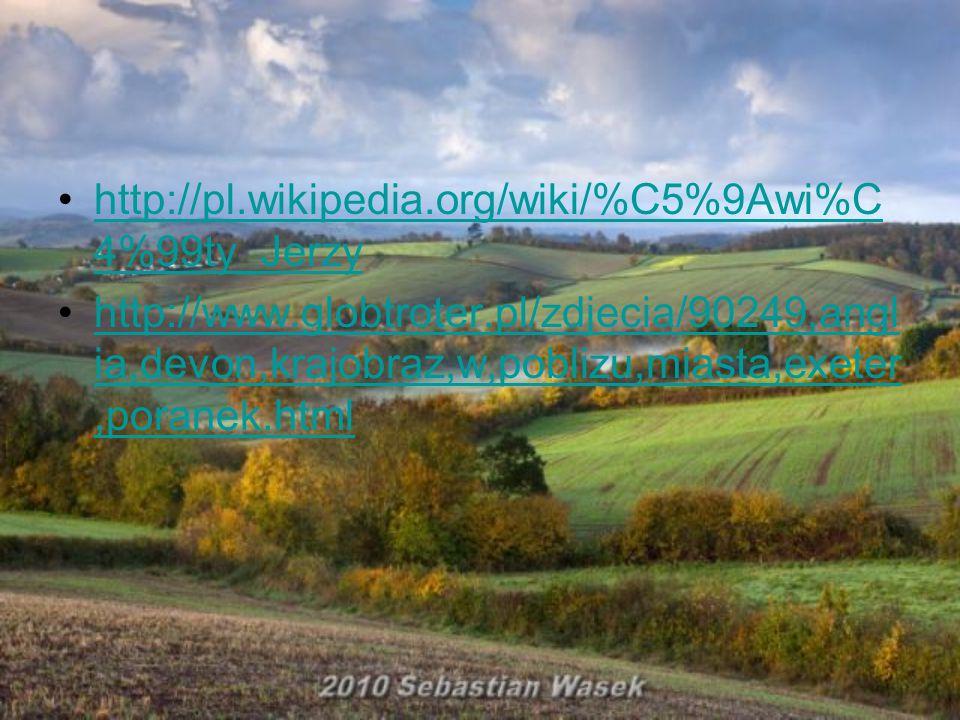 http://pl.wikipedia.org/wiki/%C5%9Awi%C4%99ty_Jerzy