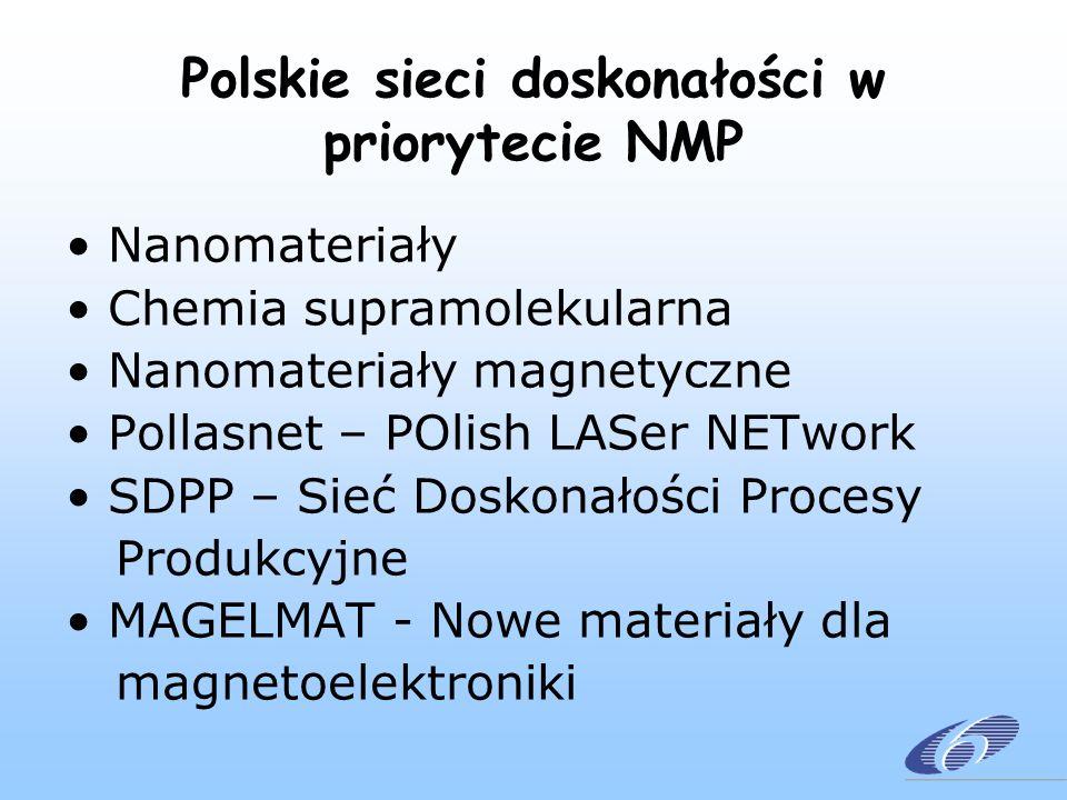 Polskie sieci doskonałości w priorytecie NMP