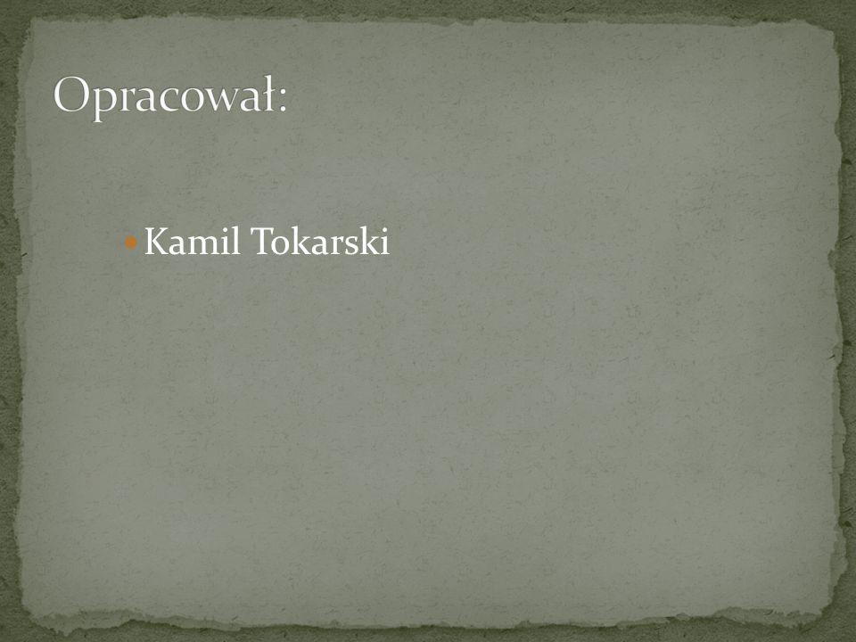 Opracował: Kamil Tokarski