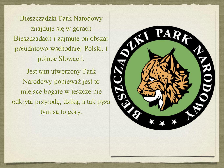 Bieszczadzki Park Narodowy znajduje się w górach Bieszczadach i zajmuje on obszar południowo-wschodniej Polski, i północ Słowacji.