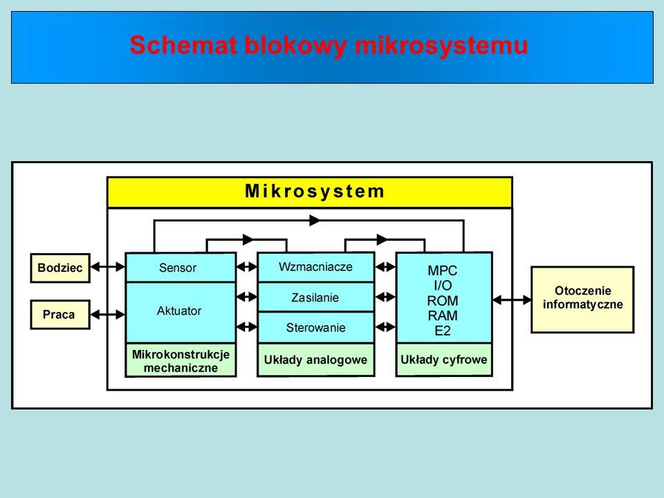 Schemat blokowy mikrosystemu
