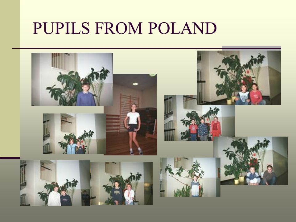 PUPILS FROM POLAND
