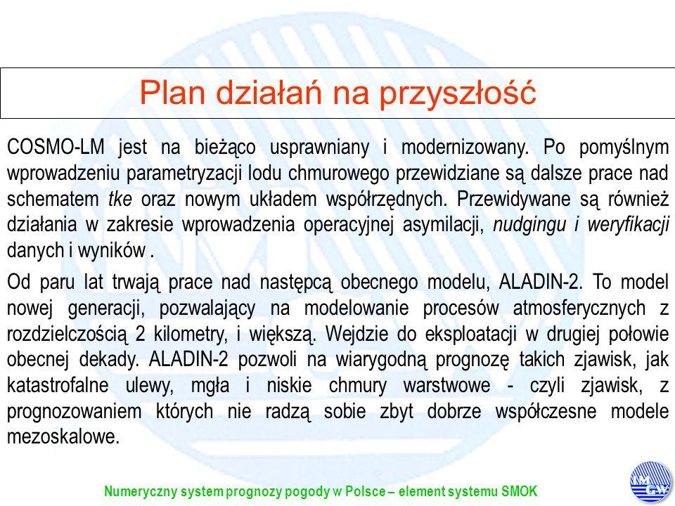 Plan działań na przyszłość