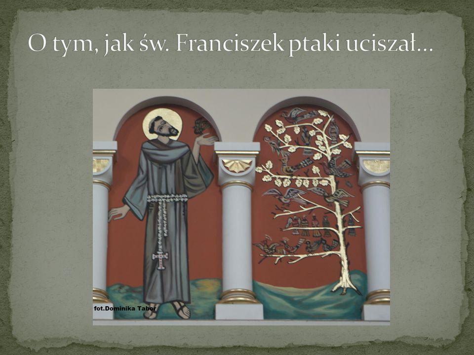O tym, jak św. Franciszek ptaki uciszał…