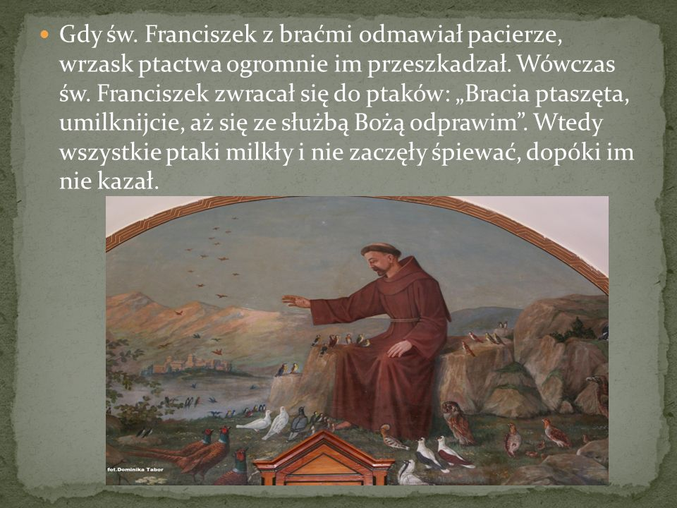 Gdy św. Franciszek z braćmi odmawiał pacierze, wrzask ptactwa ogromnie im przeszkadzał.