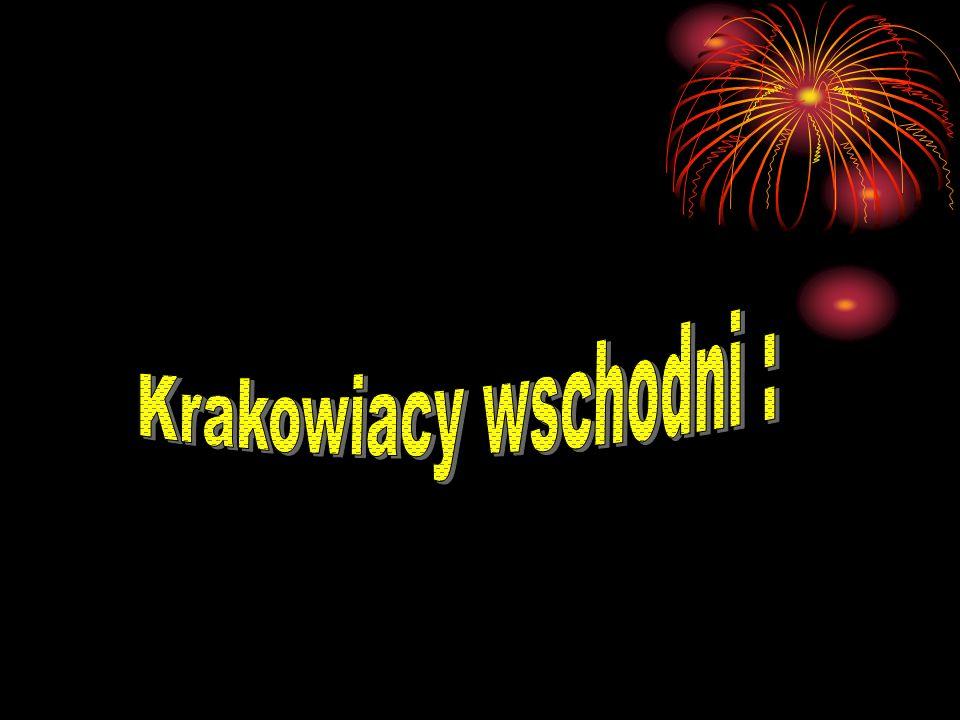 Krakowiacy wschodni :