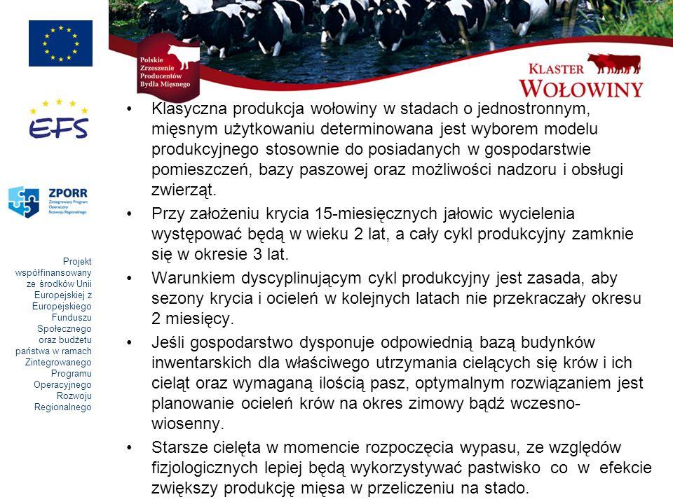 Klasyczna produkcja wołowiny w stadach o jednostronnym, mięsnym użytkowaniu determinowana jest wyborem modelu produkcyjnego stosownie do posiadanych w gospodarstwie pomieszczeń, bazy paszowej oraz możliwości nadzoru i obsługi zwierząt.