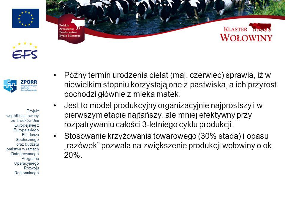 Późny termin urodzenia cieląt (maj, czerwiec) sprawia, iż w niewielkim stopniu korzystają one z pastwiska, a ich przyrost pochodzi głównie z mleka matek.