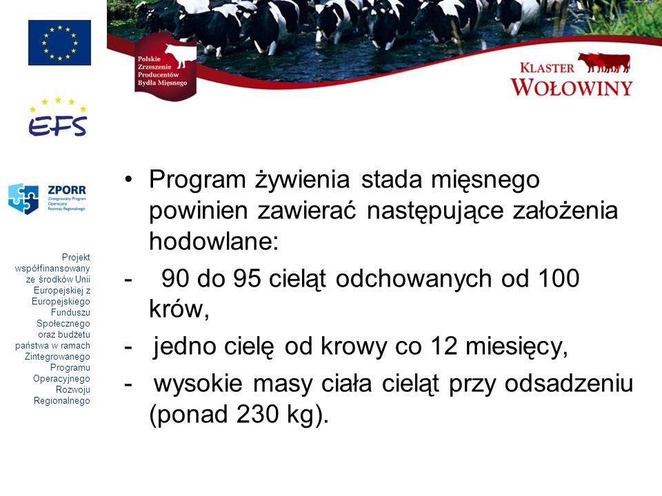 Program żywienia stada mięsnego powinien zawierać następujące założenia hodowlane: