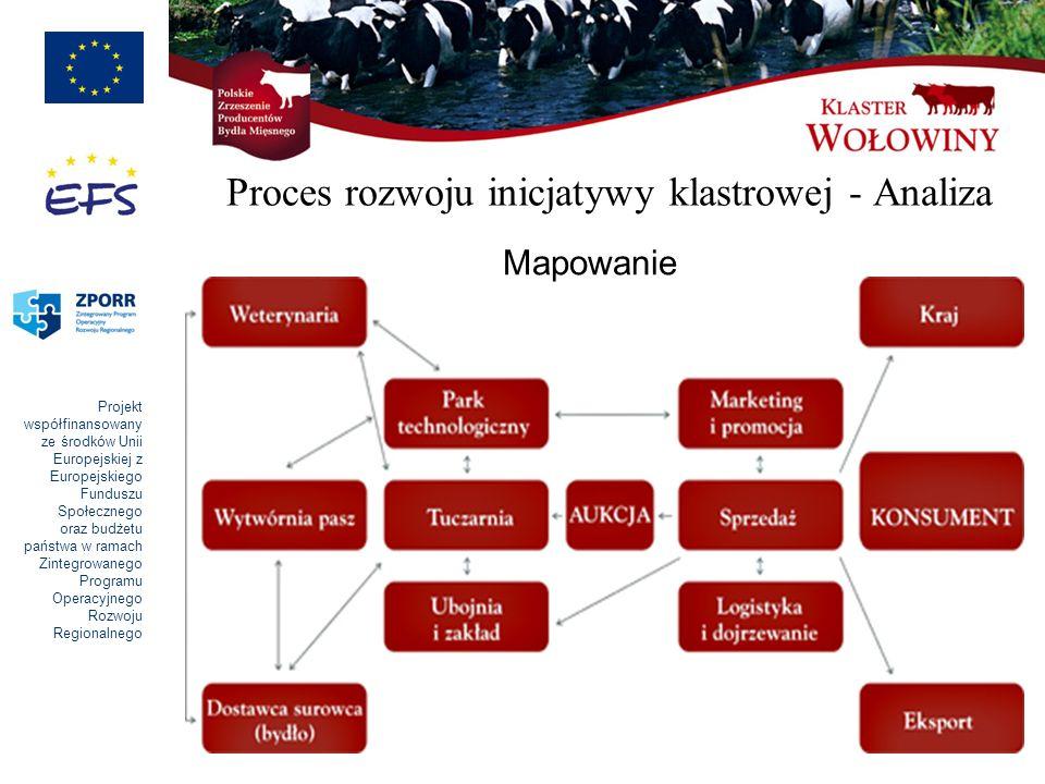 Proces rozwoju inicjatywy klastrowej - Analiza