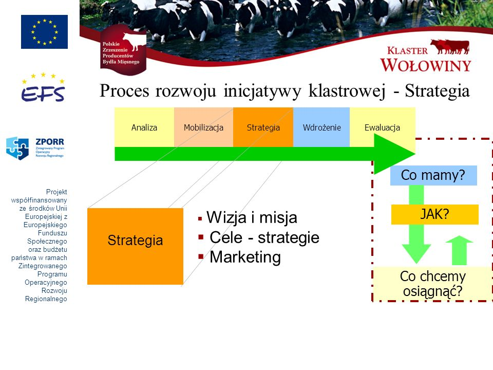 Proces rozwoju inicjatywy klastrowej - Strategia