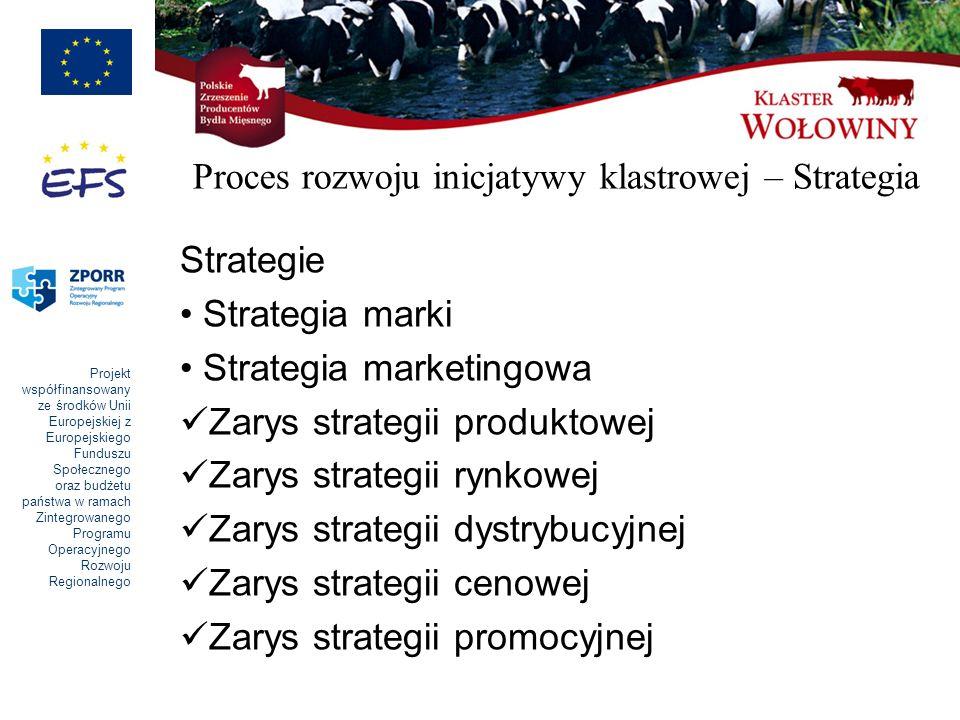 Proces rozwoju inicjatywy klastrowej – Strategia