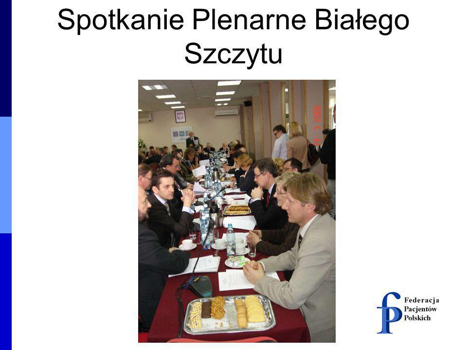 Spotkanie Plenarne Białego Szczytu