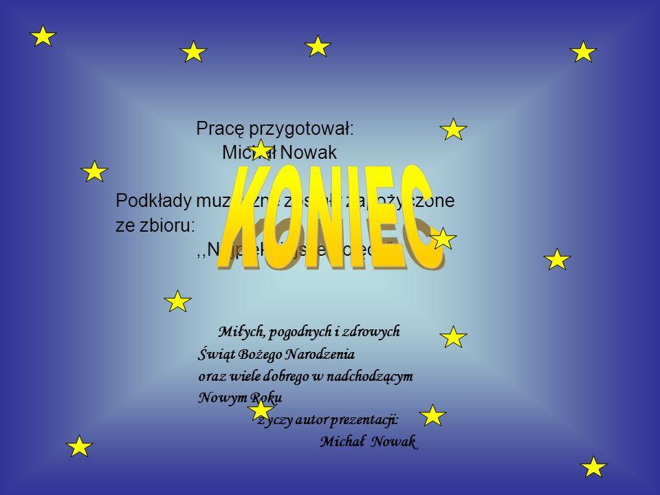 KONIEC Miłych, pogodnych i zdrowych Pracę przygotował: Michał Nowak