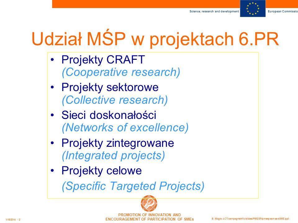 Udział MŚP w projektach 6.PR