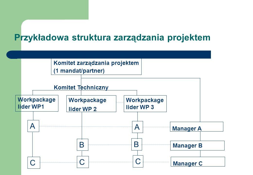 Przykładowa struktura zarządzania projektem