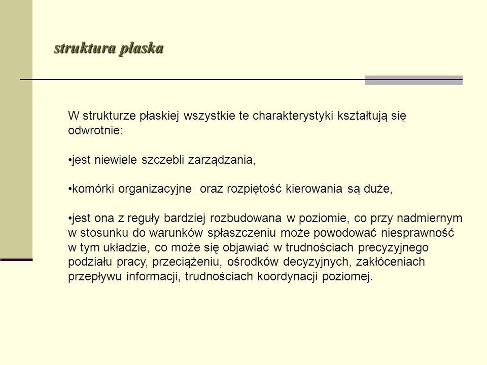 struktura płaska W strukturze płaskiej wszystkie te charakterystyki kształtują się odwrotnie: jest niewiele szczebli zarządzania,