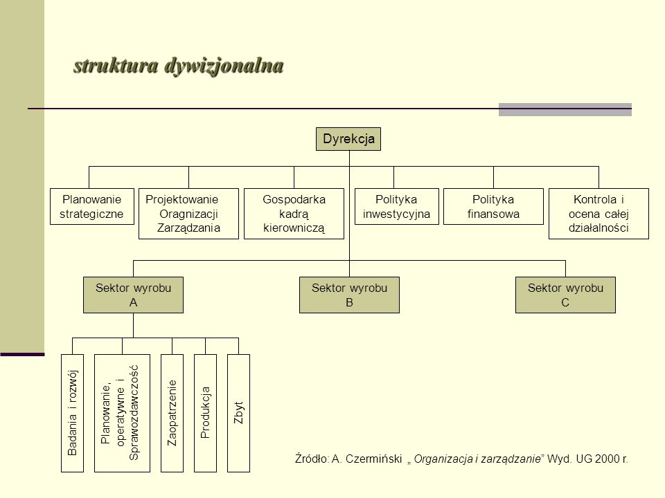 struktura dywizjonalna