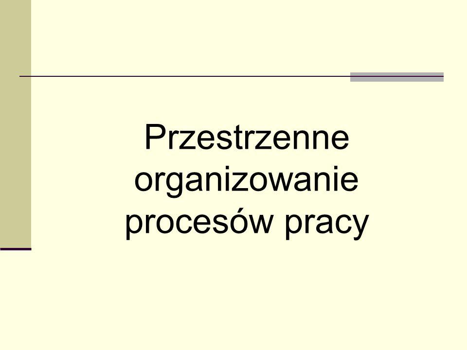 Przestrzenne organizowanie procesów pracy