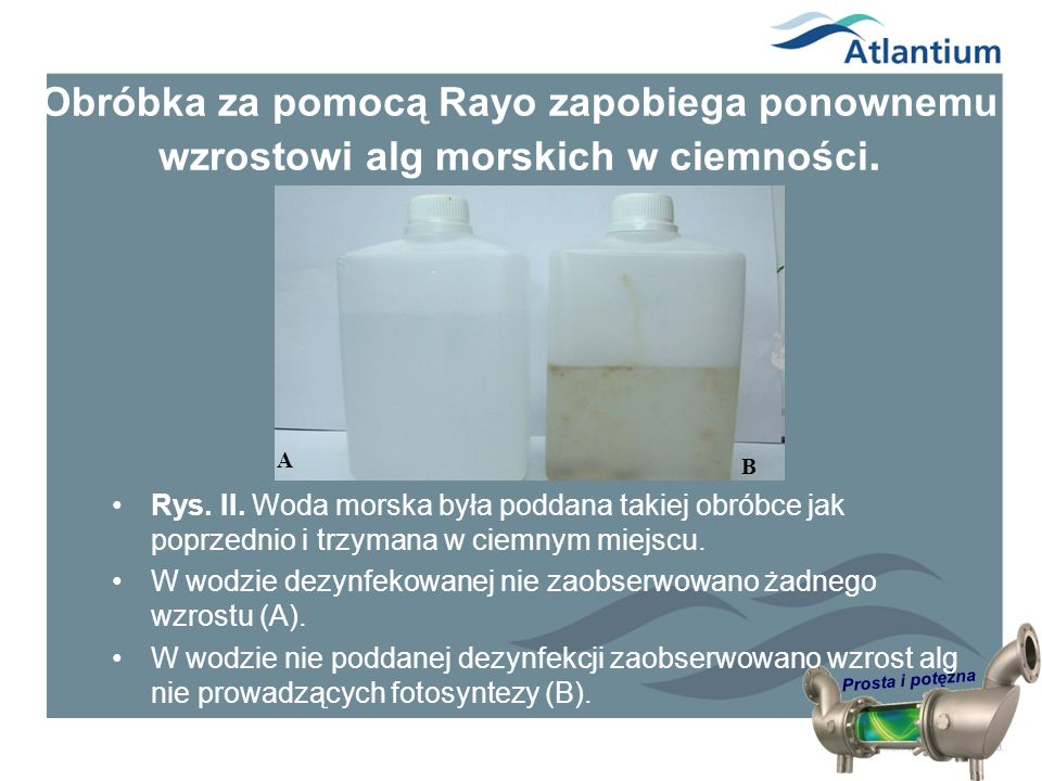 Obróbka za pomocą Rayo zapobiega ponownemu wzrostowi alg morskich w ciemności.