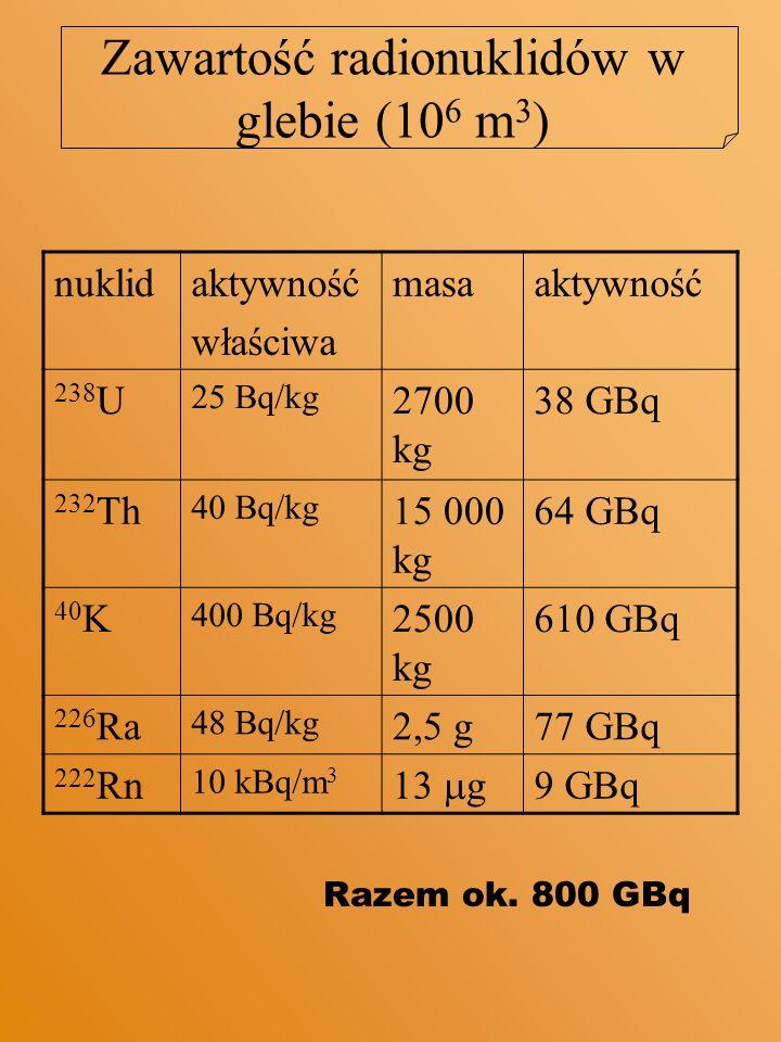 Zawartość radionuklidów w glebie (106 m3)