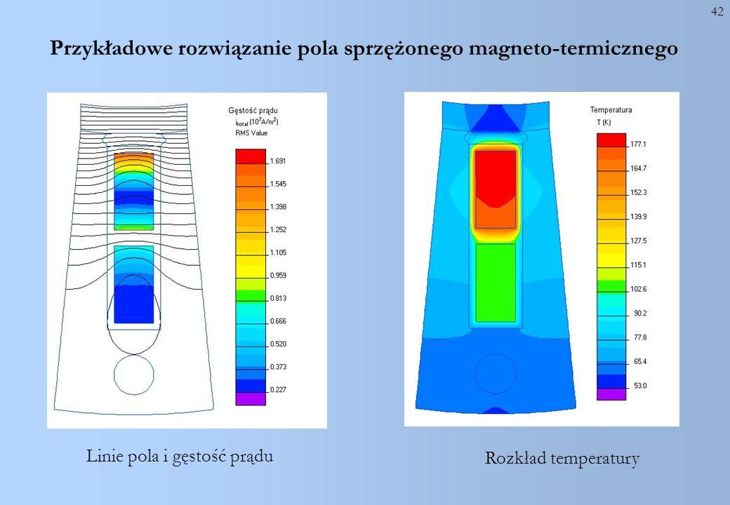 Przykładowe rozwiązanie pola sprzężonego magneto-termicznego