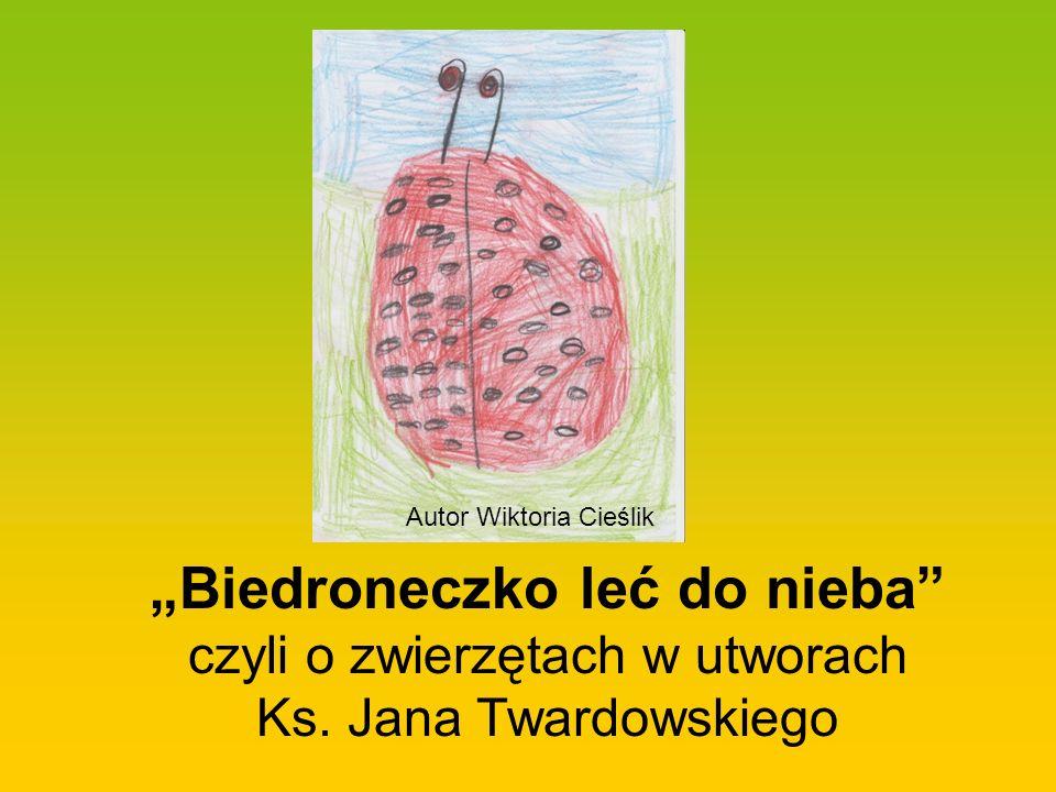 Autor Wiktoria Cieślik