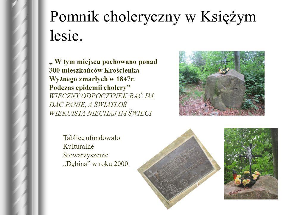Pomnik choleryczny w Księżym lesie.