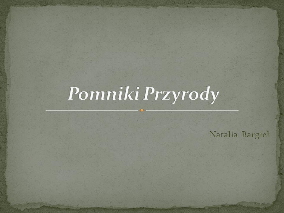 Pomniki Przyrody Natalia Bargieł