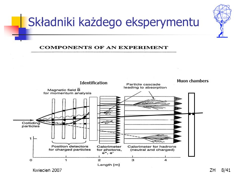 Składniki każdego eksperymentu