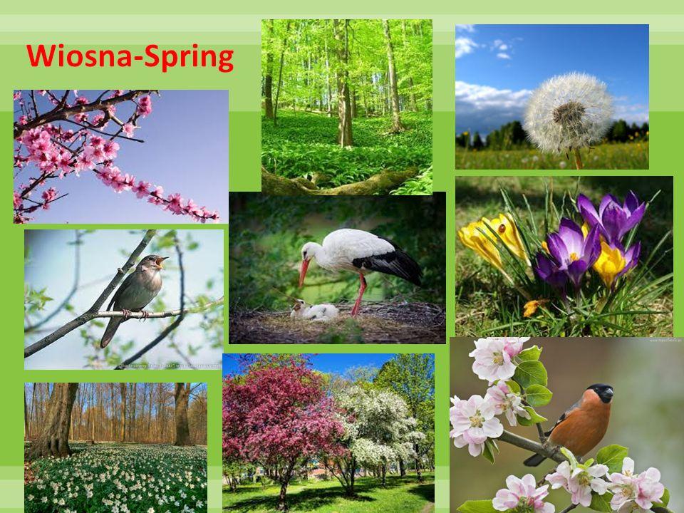 Wiosna-Spring