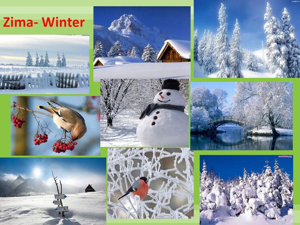 Zima- Winter