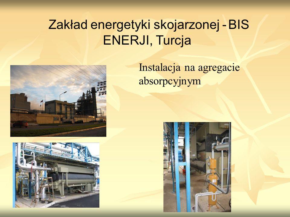Zakład energetyki skojarzonej - BIS ENERJI, Turcja