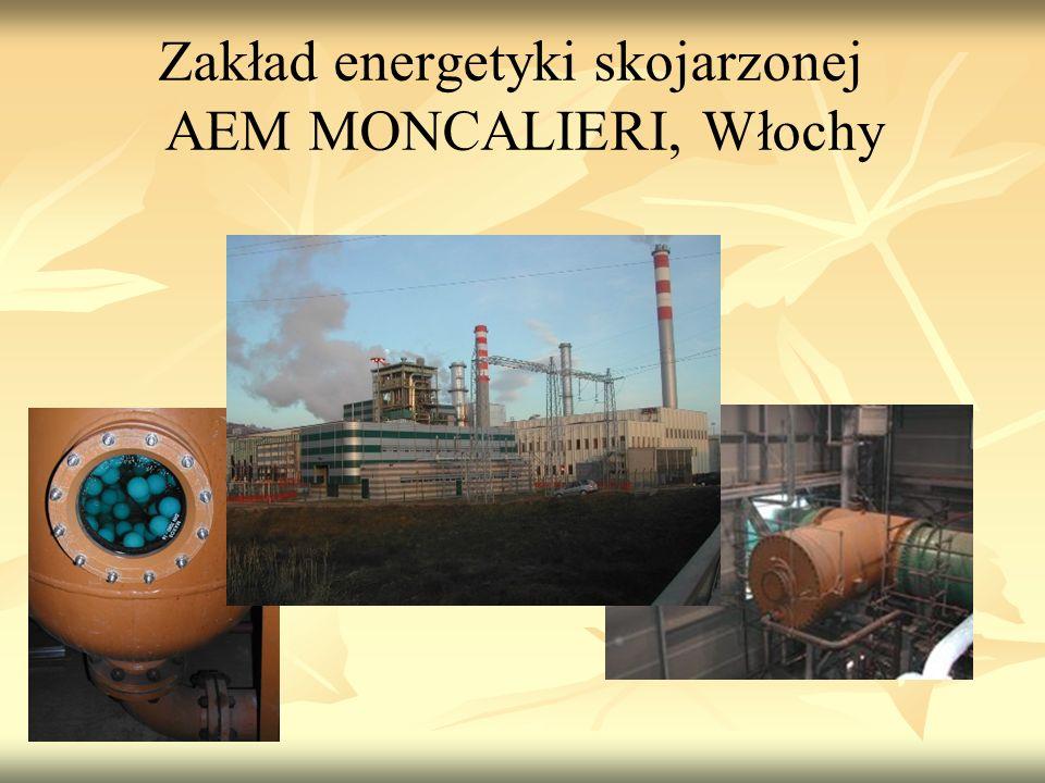 Zakład energetyki skojarzonej AEM MONCALIERI, Włochy
