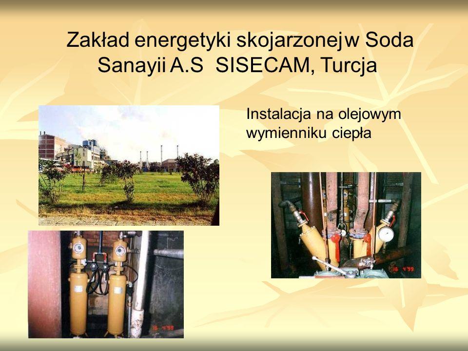 Zakład energetyki skojarzonej w Soda Sanayii A.S SISECAM, Turcja