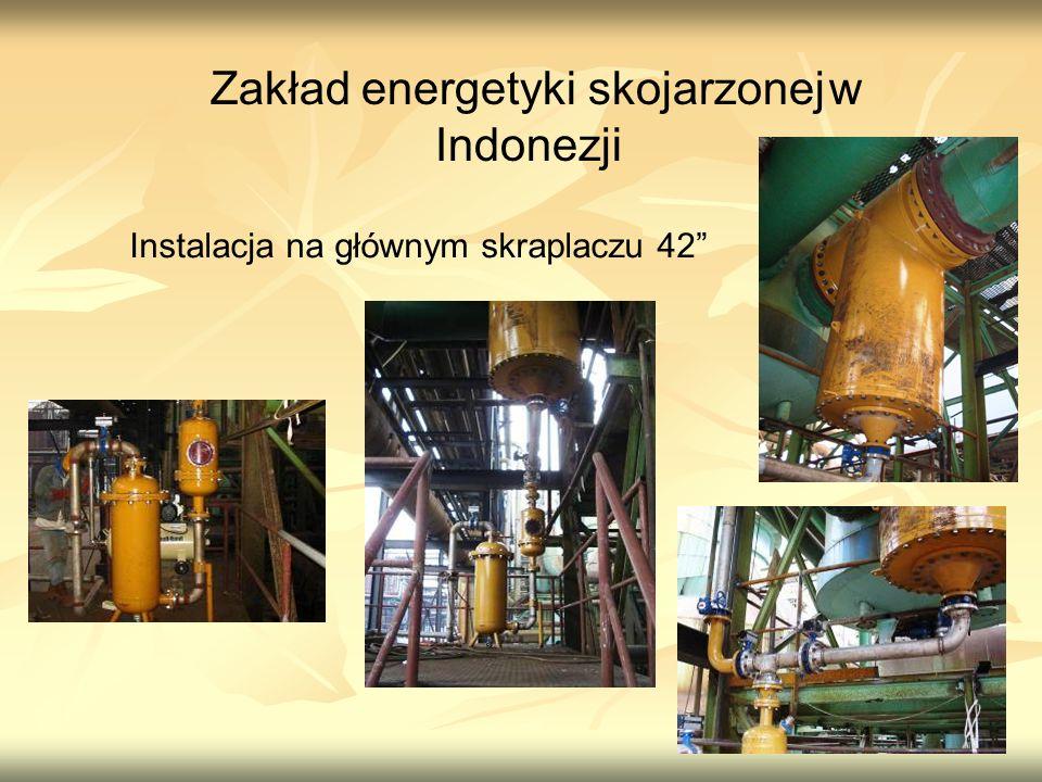 Zakład energetyki skojarzonej w Indonezji