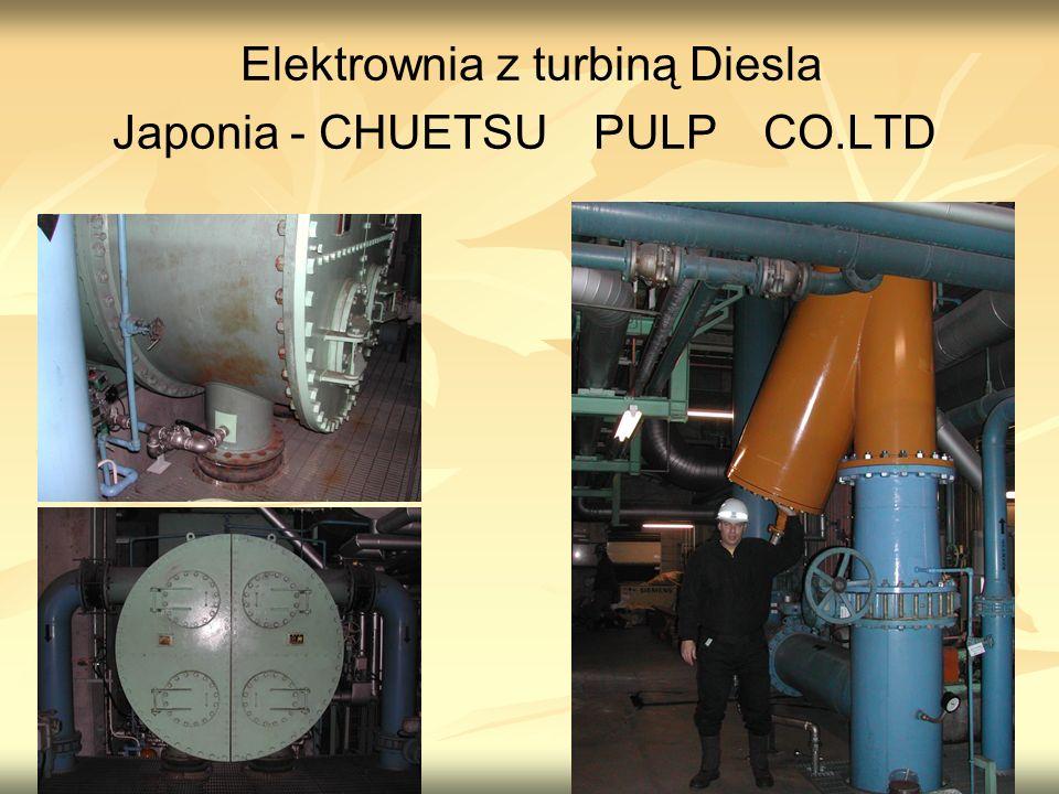 Elektrownia z turbiną Diesla Japonia - CHUETSU PULP CO.LTD
