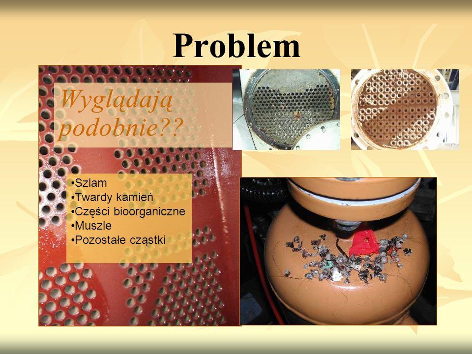 Problem Wyglądają podobnie Szlam Twardy kamień Części bioorganiczne