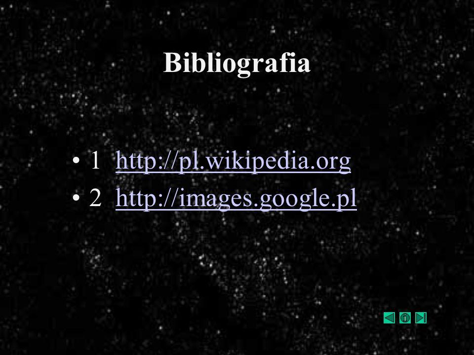Bibliografia 1 http://pl.wikipedia.org 2 http://images.google.pl