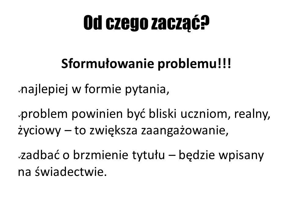 Sformułowanie problemu!!!
