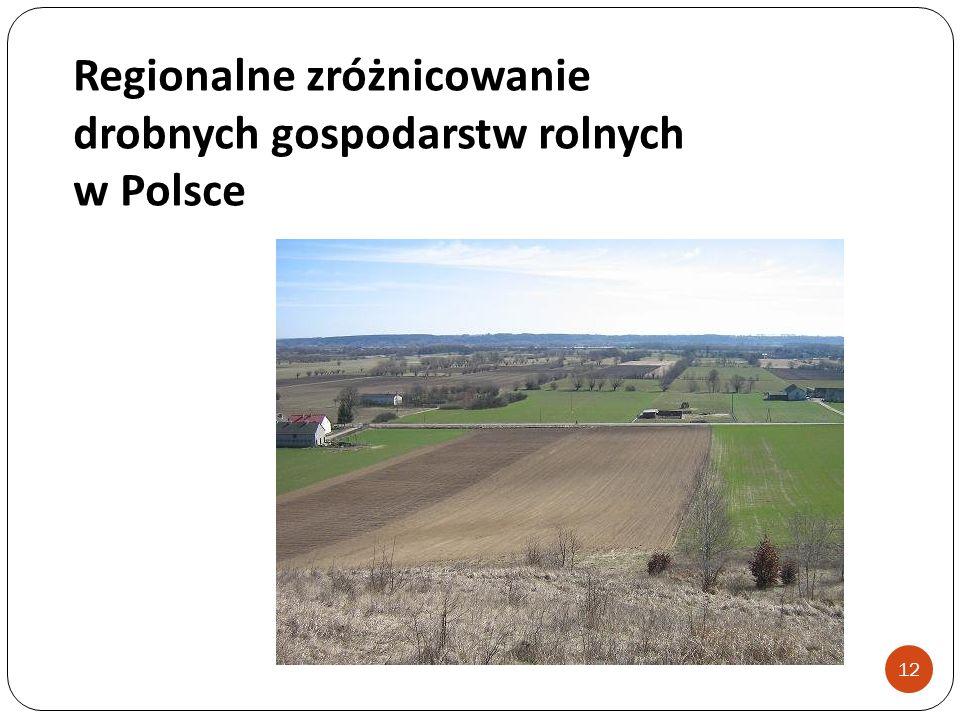 Regionalne zróżnicowanie drobnych gospodarstw rolnych w Polsce