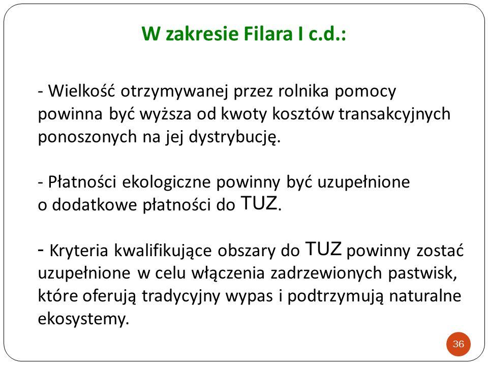 W zakresie Filara I c.d.: - Wielkość otrzymywanej przez rolnika pomocy